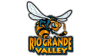 Rio Grande Valley Killer Bees