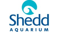 Shedd Aquarium Only Pass