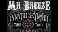Mr. Breeze - A Tribute to Lynyrd Skynyrd