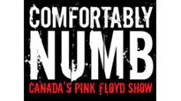 Comfortably Numb... Canada's Pink Floyd Show