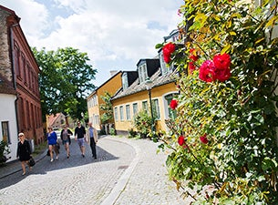 Guidade turer i Lund