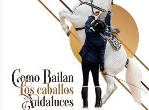 Como bailan los caballos andaluces