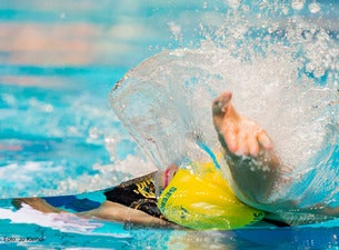 FINA/airweave Swimming World Cup 2017