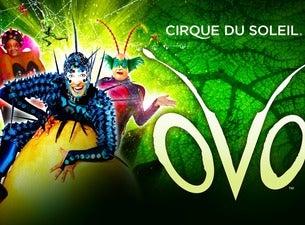 Cirque du Soleil - OVO