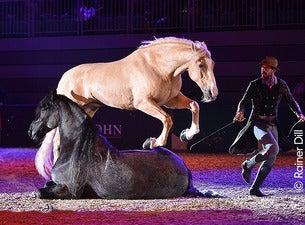 Faszination Pferd