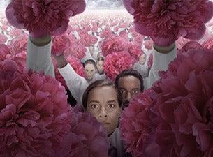 Blommassakern