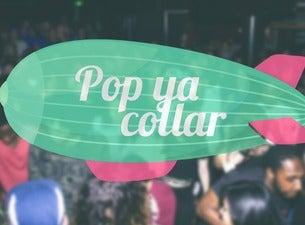 Pop Ya Collar