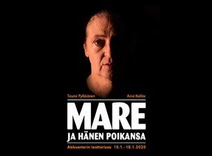 Tauno Pylkkänen: Mare ja hänen poikansa