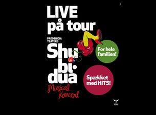 Shu-Bi-Dua Musical Koncert