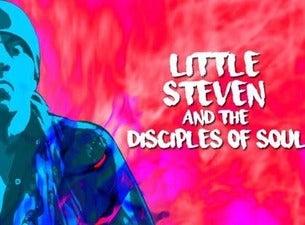Little Steven & the Disciples of Soul
