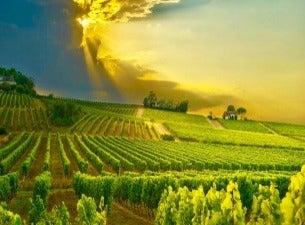 Languedoc Vindagen