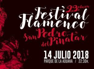 Festival Flamenco San Pedro Del Pinatar