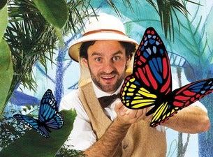 Die Werkstatt der Schmetterlinge