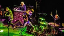 The Waterboys - In Concert