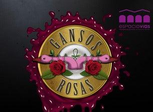 "GANSOS ROSAS ""TRIBUTO A GUNS N´ ROSES"""