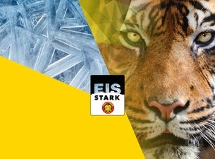SCL Tigers – Gruppe C