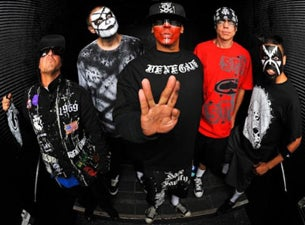 Hed Pe At Reverb