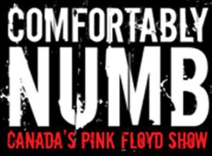 Comfortably Numb... Canada's Pink Floyd Show Tickets