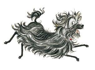 Hairy MaclaryTickets
