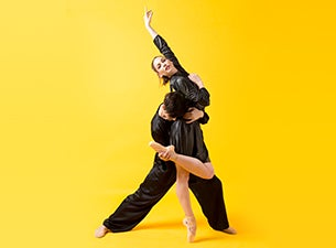 AAF: Subtle Dances