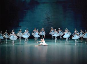 how to dance swan lake