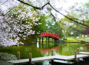 Memphis Botanic Garden Admission Tickets