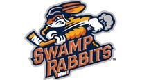 Greenville Swamp Rabbits vs. South Carolina Stingrays