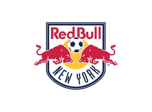 New York Red Bulls prayersforrain 2 points 3 points 4 points 1 year ago Renewals start in August typically. Actually I got my renewal notice last year in mid July that renewals started on August 2nd so they are definitely late this year.