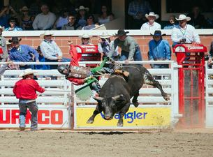 Calgary Stampede RodeoTickets