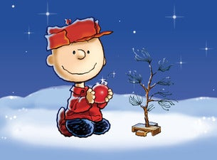 A charlie brown christmas chicago tickets event dates a charlie brown christmas chicago tickets voltagebd Choice Image