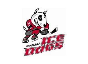 Niagara IceDogsTickets