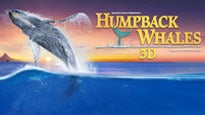 HUMPBACK WHALES 3D, Rated G at IMAX THEATRE at TROPICANA
