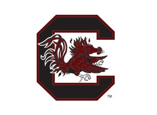 University of South Carolina Gamecocks Women's Basketball Tickets