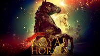 Gala Of The Royal Horses at Hartman Arena