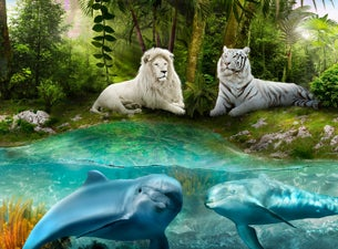 Siegfried Roy 39 S Secret Garden And Dolphin Habitat At The Mirage Tickets Event Dates