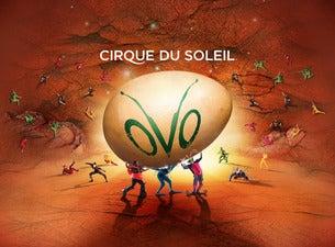 Résultats de recherche d'images pour «ovo cirque du soleil 2016»